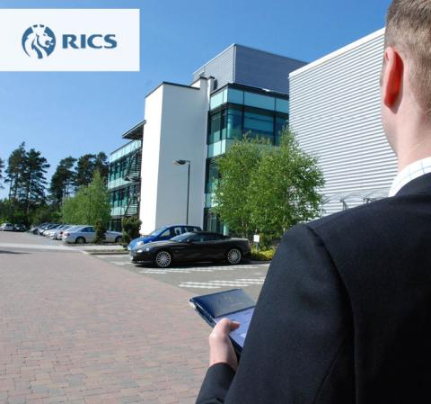 rics surveyors